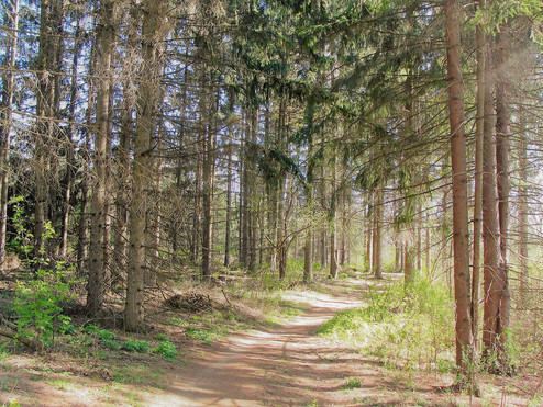 Kettle Moraine Trail