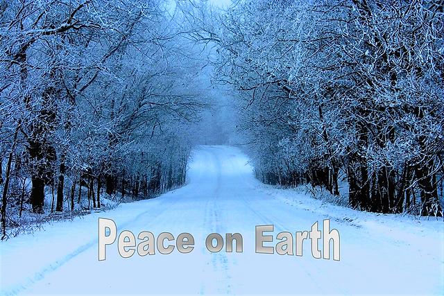 Peace on Earth photo by Michael Laake.pn