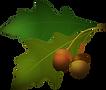 oak leaf 2.png