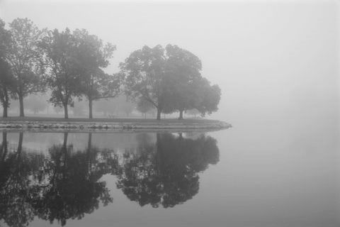 Lagoon in fog.jpg