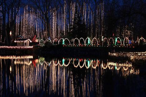Holiday Light Show IMG_9786 300 dpi  3MB