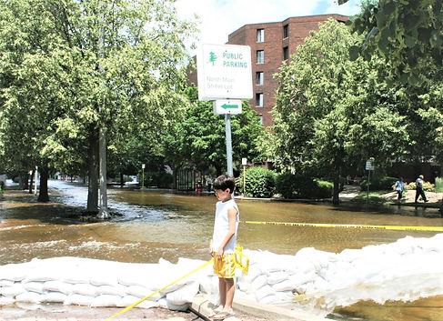 Flood on Main Street at United Way bldg