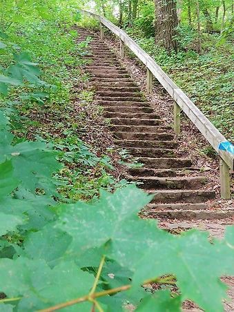 Cathy Corrado McCarthy Devils Staircase.