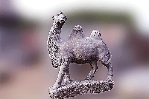 Realistische kameel op sokkel