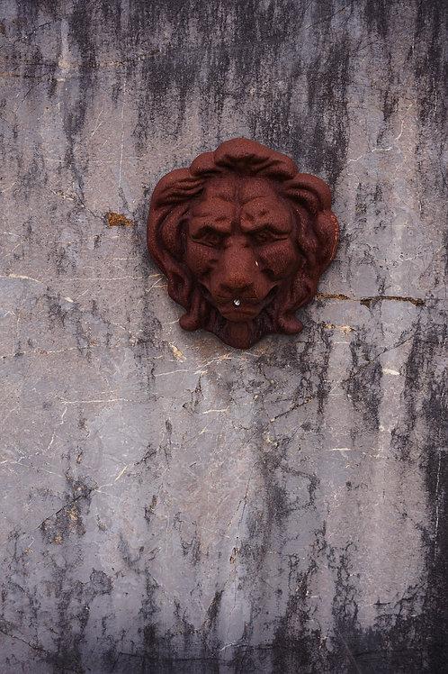 Wandfontein met leeuwenhoofd