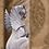 Thumbnail: Fantasiewezen met vleugels