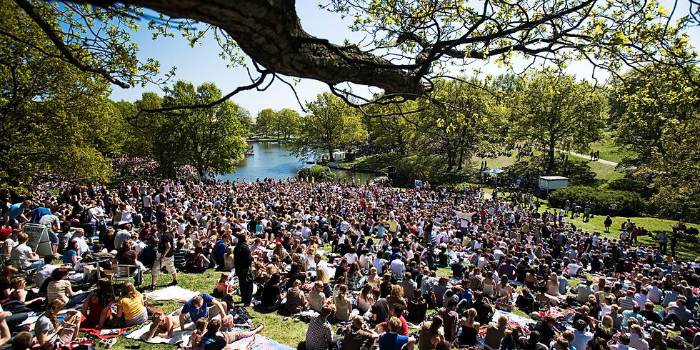 Dánská univerzita – liberální prostředí nebo anarchie?