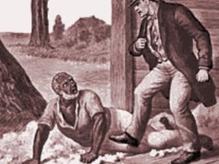 תשובה לעבד עולם ממוצא דרדעי