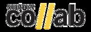 sundance collab logo.png