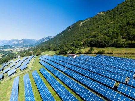 Fotovoltaico: arrivano i pannelli che sfruttano la fotosintesi clorofilliana e creano cibo