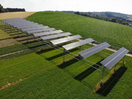 Fotovoltaico e agricoltura possono convivere? Uno studio rivela i benefici del sistema agrovoltaico