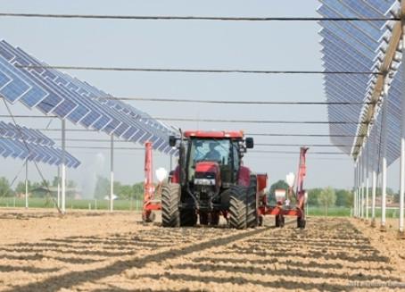 Anche in Australia si punta sull'agro-fotovoltaico. A che punto siamo?