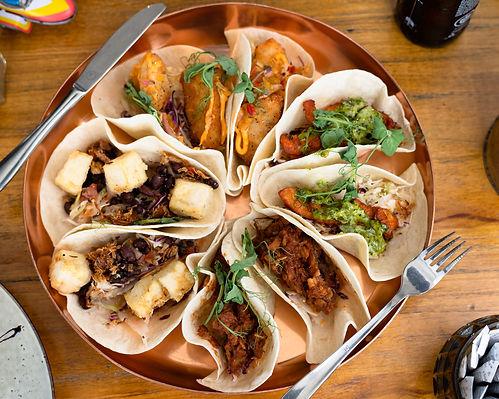 Harlan Pepper Food Co._taco.platters_288