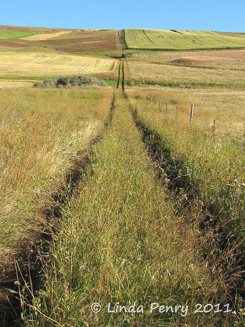 Prairie Trail Notecard