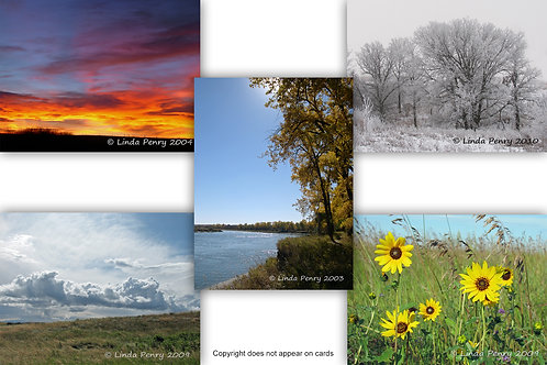 Seasons of the Prairie Notecard Pack