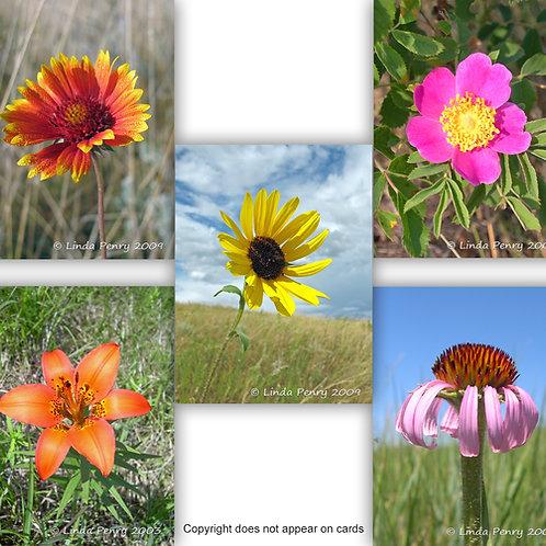 Prairie Bouquet Notecard Pack