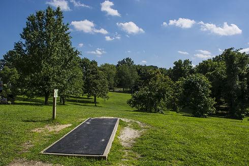 Disc Golf fairway.jpg