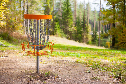 Disc golf (frolf) basket on a forest cou