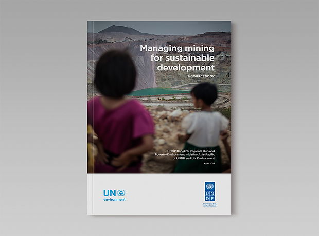 UNDP United Nations Development Programme - Covers for reports and documents - Cover