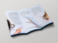 Australian National University marketing - minhdesigns - graphic design by Minh