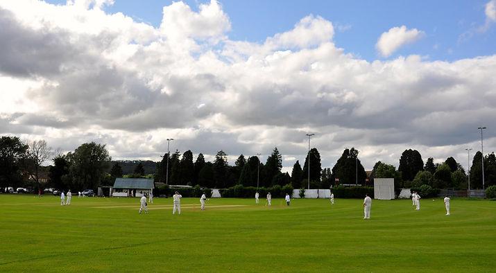 LedburyOldGround-Richard Griffiths.jpg