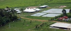 Grupo Mirassol é pioneiro em receber a certificação do Green Farm CO²Free