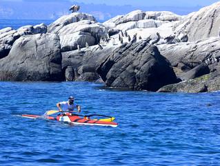 Vuelta a la Isla de los Pingüinos se llevó con éxito en su segunda versión