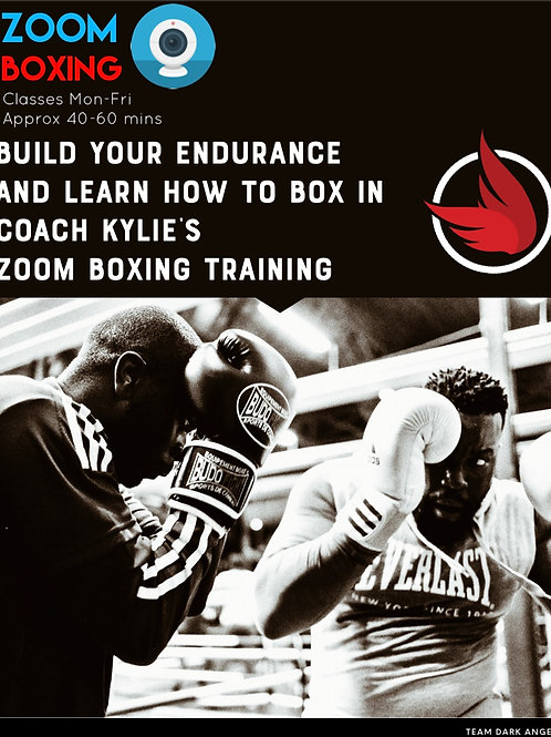 Zoom Boxing Classes