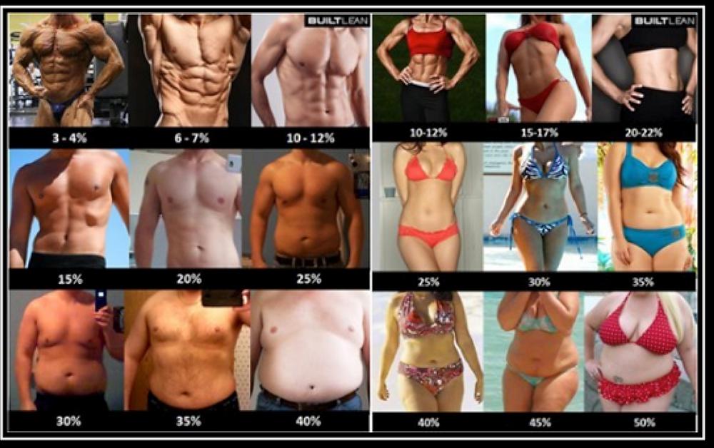 porcentaje-de-grasa-cuerpos