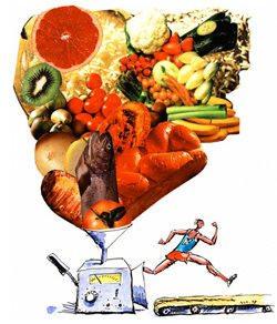 Mitos de la proteina
