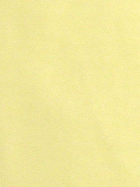 Lemon cotton knit