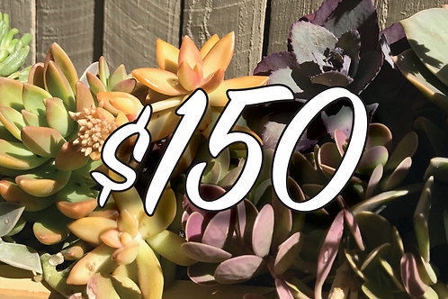 Bespoke Gift Voucher $150