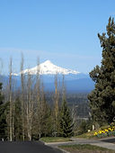 View of snow capped Mt. Jefferson from Awbrey Butte