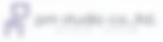 pmstudios logo.png