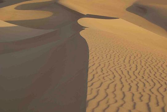 Wüstenreise