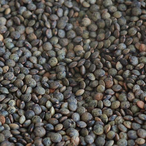 Australian French Green Lentils (Du Puy Style)  MT