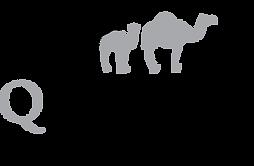 QCamel_logo.png