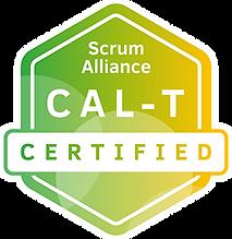 CAL-T logo.png