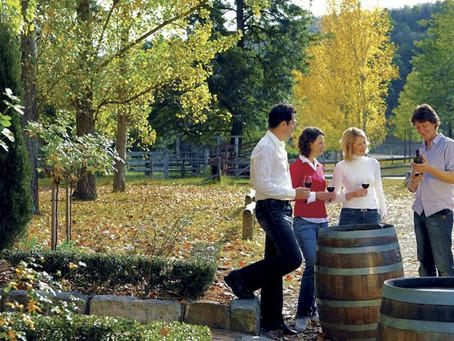 Wholesome Wine Tasting Tours At Hunter Valley