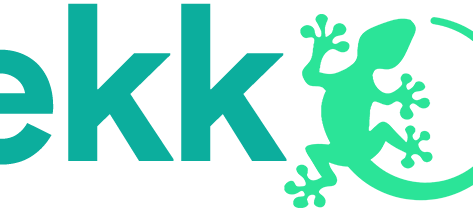API Restauration choisit la solution Gekkow de X-GIL pour ses 300 sites