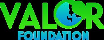 Valor Foundation 2 (1).png