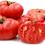 Thumbnail: Organic Brandywine Heirloom Tomato Plant