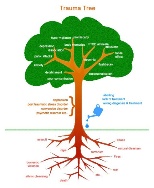 Trauma tree