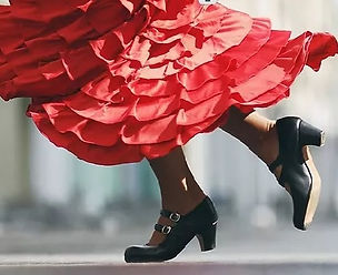 Flamenco anfanger.jpg