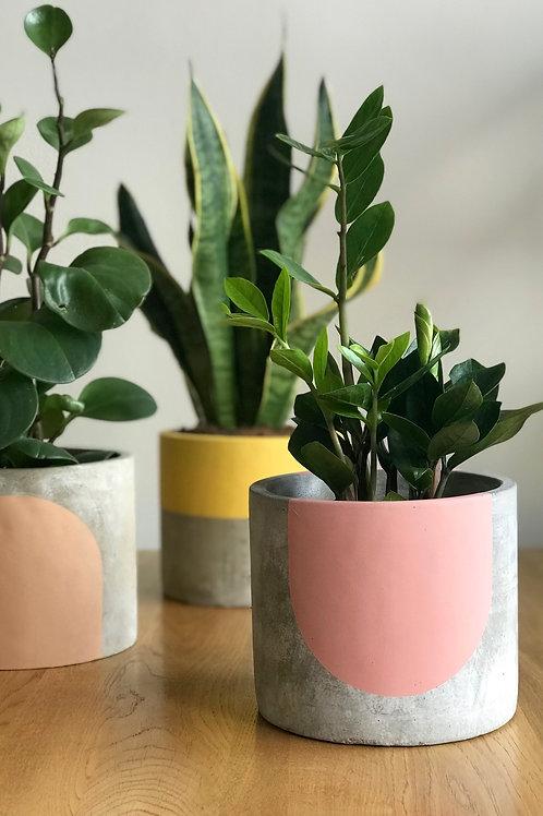 Rose & Grey Concrete Collection