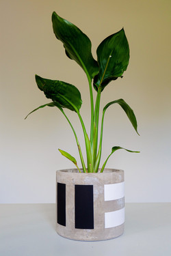 The Conran Shop Plant Pots Collection