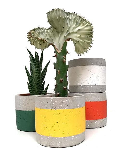 Textured concrete pots