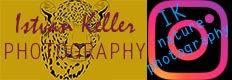 leopard-head-logo1.jpg