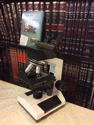 microscope chaatnez.jpeg