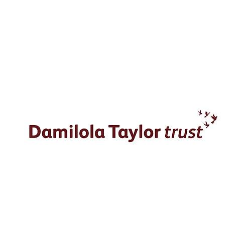 Damilola Taylor Trust Logo_700x700.jpg